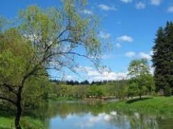Lake Sakajawea, longview wa, longview washington